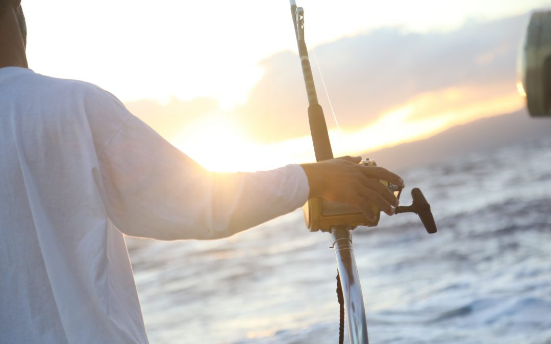 MOBILE BAY ADVENTURES LAUNCHES NEW WEBSITE
